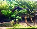 Akwarium 120cm długości